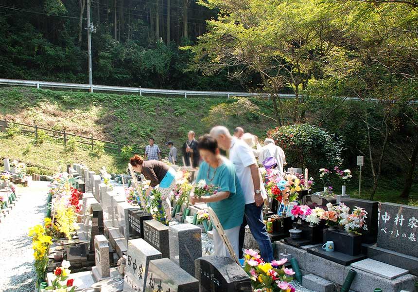墓地で掃除をしたり花を飾る様子